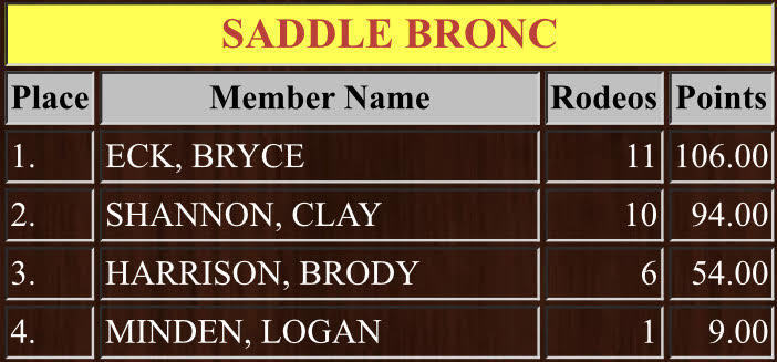 Top 4 placers in the Kansas High School Rodeo Association's Saddle Bronc Event.  1) Bryce Eck, 2) Clay Shannon, 3) Brody Harrison, and 4) Logan Minden.