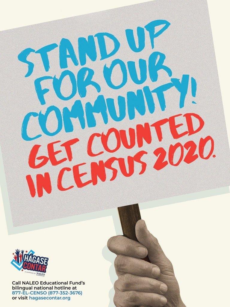Stand and Be Counted Poster for US Census